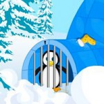Penguin Escape For Christmas Party