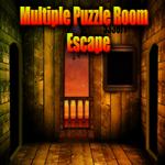 Multiple Puzzle Room Escape