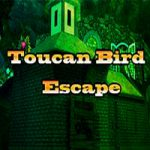 Toucan Bird Escape