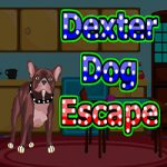 Dexter Dog Escape