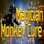 Magician Monkey Cure