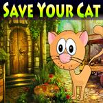 Save Your Cat