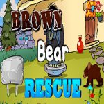 Brown Bear Rescue