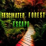 Fascinated Forest Escape