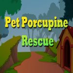 Pet Porcupine Rescue