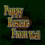 Puppy Rescue From Well