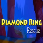 Diamond Ring Rescue