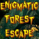 Enigmatic Forest Escape
