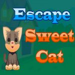 Escape Sweet Cat