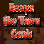 Escape The Thorn Cords
