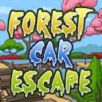 Forest Car Escape