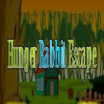 Hunger Rabbit Escape