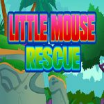 Little Mouse Rescue