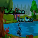 Monkey Rescue From House