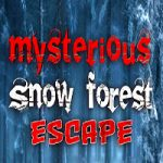 Mysterious Snow Forest Escape