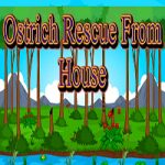Ostrich Rescue From House