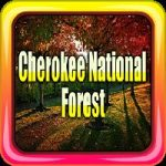 Cherokee National Forest Escape