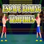 Escape Boxing Trophies