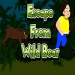 Escape From Wild Bear
