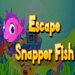Escape Snapper Fish
