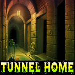 Tunnel Home Escape