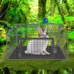 White Rabbit Escape