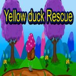 Yellow Duck Rescue