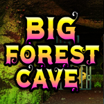 Big Forest Cave Escape