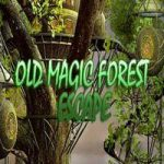 Old Magic Forest Escape