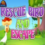 Rescue Bird And Escape