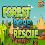 Forest Dove Rescue