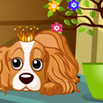 Royal Pet Dog Escape