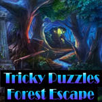 Tricky Puzzles Forest Escape