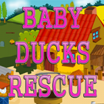 Baby Ducks Rescue
