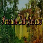 Persian Cat Rescue