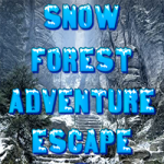 Snow Forest Adventure Escape