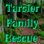 Tarsier Family Rescue