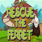 Rescue The Ferret