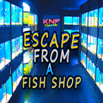 Escape From A Fish Shop