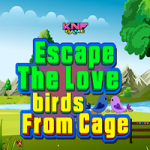 Escape The Love Birds From Cage