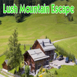 Lush Mountain Escape