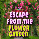 Escape From The Flower Garden