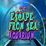 Escape From Sea Aquarium