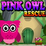 Pink Owl Rescue