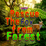 Rescue The Fox From Forest