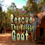 Rescue The Village Goat