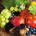 Amajeto Autumn Fruits