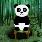 Bamboo Forest Panda Rescue