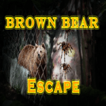 Brown Bear Escape