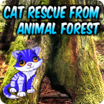 Cat Rescue From Animal Forest